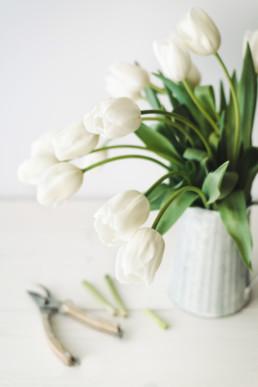 white tulips arrangement